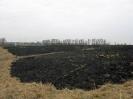 Flächenbrand B1